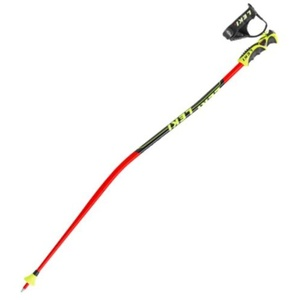 Hole Leki Worldcup Lite GS 6366590, Leki