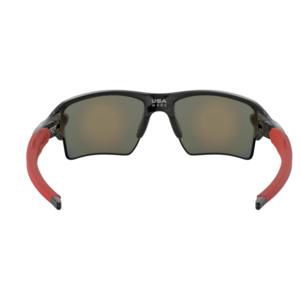 Sun glasses OAKLEY Flak 2.0 XL Pole Blk w/ PRIZM Ruby OO9188-8059, Oakley