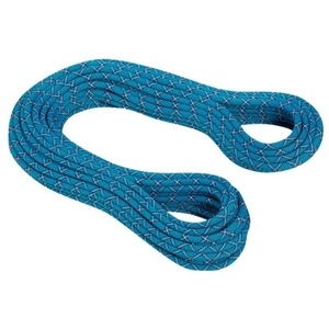 Rope MAMMUT 9.5 Infinity Protect (2010-02701), Ocean-royal 51140, Mammut