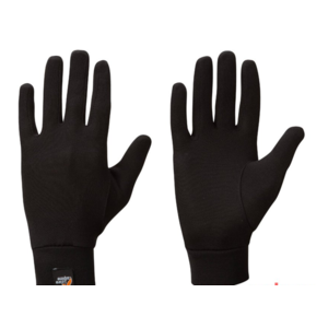 Gloves Lowe Alpine Silkwarm Glove black / bl, Lowe alpine