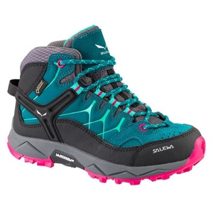 Shoes Salewa JR ALP TRAINER MID GTX 64006-8632, Salewa