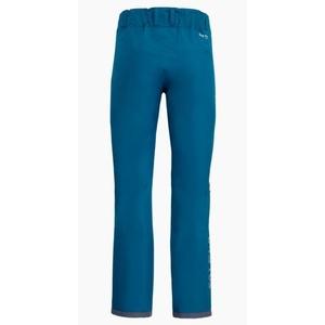 Pants Salewa SESVENNA ACTIVE GTX M PANT 27195-8361, Salewa