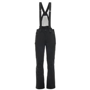 Ski pants Spyder Men's Bormio GTX 181712-001, Spyder