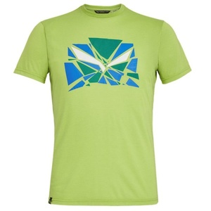 T-Shirt Salewa EAGLE DRI-REL M S/S TEE 27355-5257, Salewa
