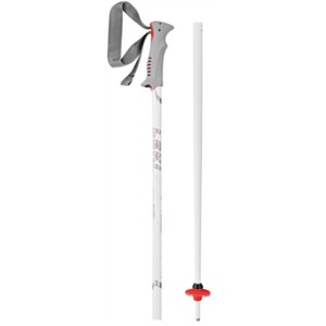 Downhill sticks LEKI Vista 6404614, Leki