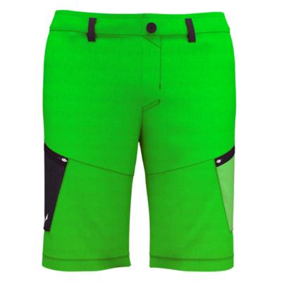 Men shorts Salewa Alpine Hemp M Cargo shorts 28033-5640, Salewa