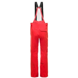 Ski pants Spyder Men's Bormio GTX 181712-620, Spyder