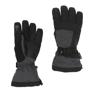 Gloves Spyder Over Web GORE-TEX 197004-029, Spyder