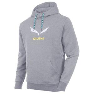 Sweatshirt Salewa SOLIDLOGO 2 CO M HOODY 25797-0620, Salewa