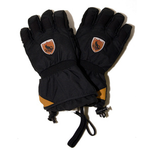Ski gloves Dynastar Rider DL1MG06-200, Dynastar
