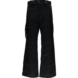 Ski pants Spyder Men `s Boss 503071-001, Spyder
