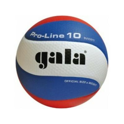 Volleyball Gala PRO-LINE 10 panels, Gala