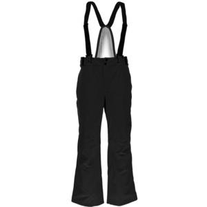 Ski pants Spyder Men's Bormio 783230-001, Spyder