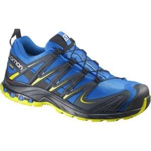 Shoes Salomon XA PRO 3D GTX ® 381554, Salomon