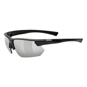 Sports glasses Uvex Sports Style 221, Black Mat (2216), Uvex