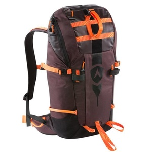 Backpack Dynastar Legend tour 40 DKGB300, Dynastar