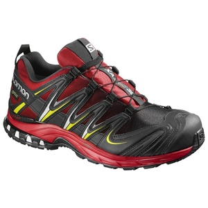 Shoes Salomon XA PRO 3D GTX ® 391858, Salomon