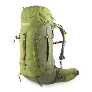 Backpack Pinguin Boulder 38 l 2020 green, Pinguin
