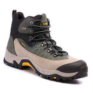 Shoes Treksta Trail Demon GTX man grey, Treksta