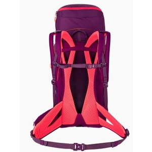 Backpack Salewa Alp Trainer 30+3 WS 1229-6870, Salewa